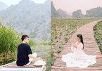 Sen nở giữa đông, hoa cúc hoa lau đẹp mê hồn ở Ninh Bình