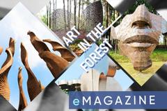 Art In The Forest là dự án nghệ thuật nổi bật năm 2019
