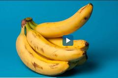 Cách bảo quản thực phẩm tươi lâu