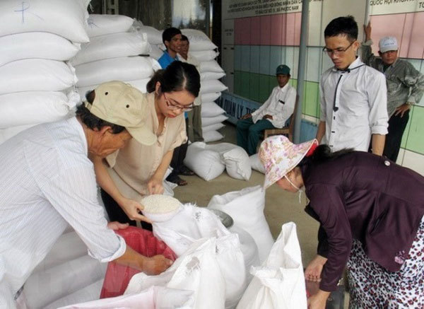 Over 110,700 tonnes of rice from reserve allocated to localities