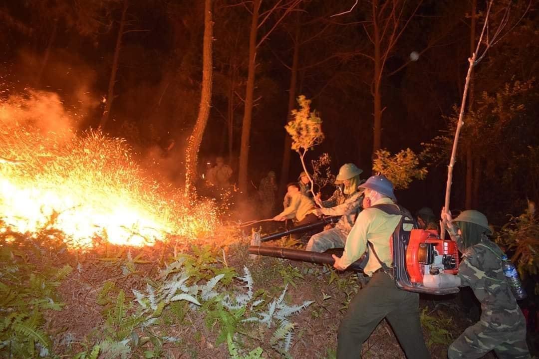 Năm 2019: Nước nhiễm dầu, lửa  thiêu rụi rừng, 'phóng thích' thuỷ ngân