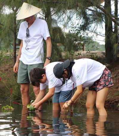 Du khách chung tay trồng rừng ngập mặn ở vịnh biển Ninh Vân