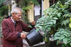 Bí quyết giúp cụ ông 101 tuổi vẫn cuốc đất, trồng cây ở Ninh Bình