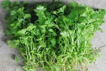 Cực tốt và cực độc, biết mà tránh khi ăn rau mùi kẻo rước ung thư vào người