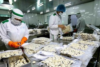 Vietnam's export of main agricultural products down 5.3% in 2019
