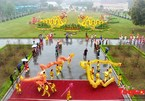 Thang Long imperial citadel to be glowing with Tet atmosphere