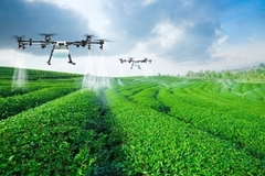 Digital transformation key driver for agriculture