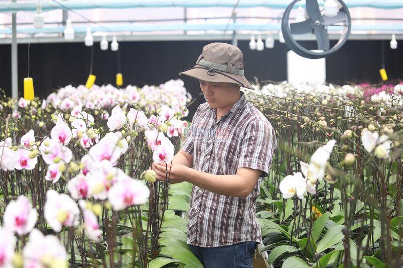 Đào tạo kỹ năng mềm, trao cơ hội để người nông dân làm du lịch nông nghiệp