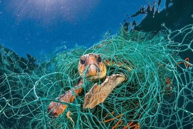 Vietnam to start plastic waste reduction action plan