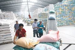 182 rice traders certified as eligible for rice exports