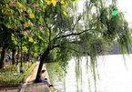 Hanoians applaud plan to build embankment around Hoan Kiem Lake
