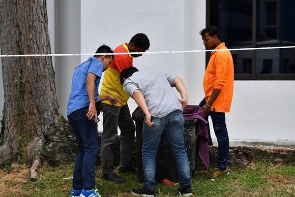 Cứu sống trẻ sơ sinh bị bỏ rơi trong thùng rác ở Singapore