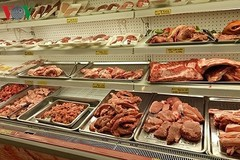Over 50 foreign enterprises keen to export pork to Vietnam