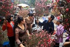 Hanoi to apply street ban for spring flower market