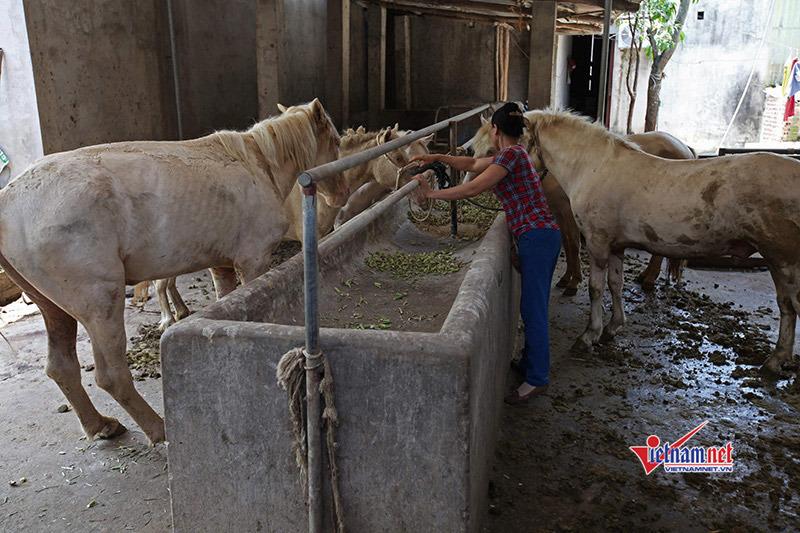 Châu Thành A: Đào tạo nghề giúp giảm nghèo, nâng cao thu nhập