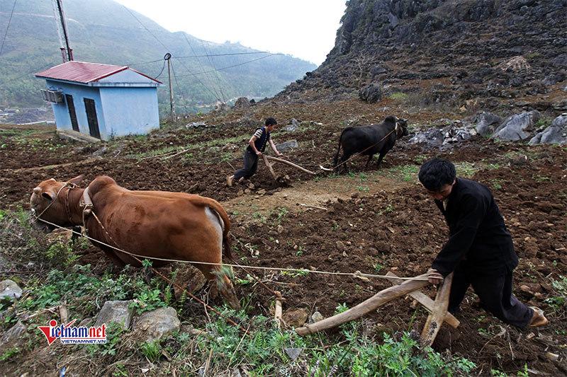 Huyện Tiên Yên: Lao động qua đào tạo đạt gần 2 vạn người