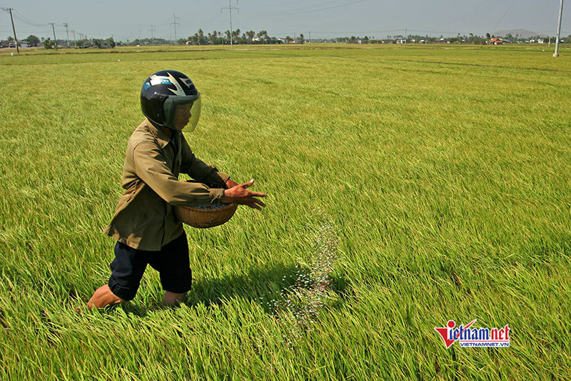 Huyện Xuyên Mộc: 10 năm đào tào nghề cho gần 1.800 lao động nông thôn