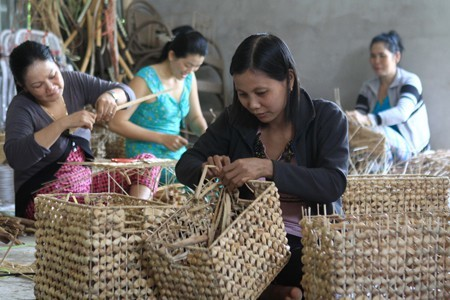 Hậu Giang mở 171 lớp đào tạo nghề nông thôn theo đề án 1956