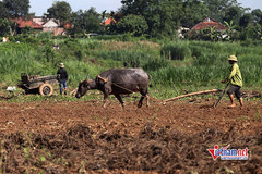 Điện Biên: 9 tháng đầu năm đào tạo nghề cho gần 5.000 lao động nông thôn