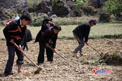 Quảng Nam: Dạy nghề lưu động tiết kiệm nhiều chi phí cho học viên