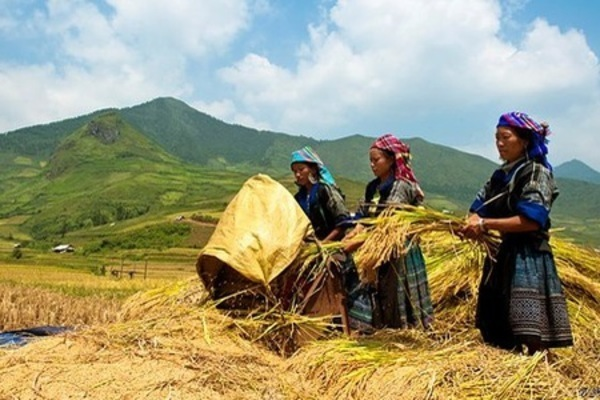 Efforts to ensure human rights seen from the border mountainous province of Ha Giang