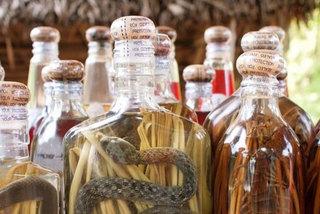 """""""Làng whisky"""" chuyên ngâm rượu rắn, rết đáng sợ"""