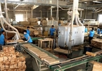 Wood processing industry targets $20 billion in exports by 2025