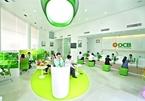 Japanese lender aims to buy into OCB