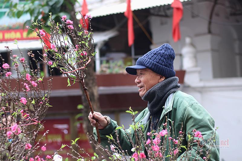 Sắc màu rực rỡ ở chợ hoa Hà Nội