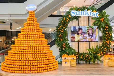 Vietnam ranks 9th among countries importing US fresh fruits