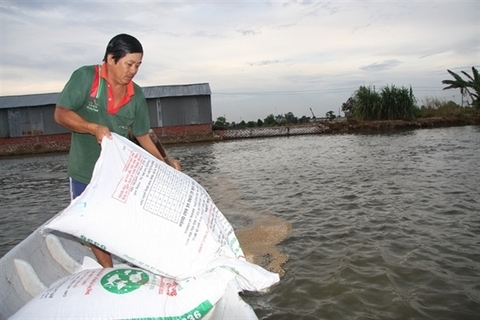 VN cracks down on use of banned substance in fish food