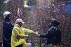 Thời tiết Tết nguyên đán Canh Tý 2020, Bắc Bộ mưa rét giao thừa, mùng 1