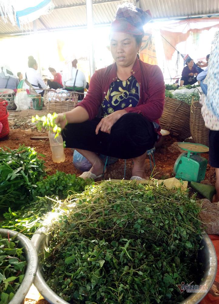 Khu chợ côn trùng bán đầy bọ xít, châu chấu... hiếm có Việt Nam