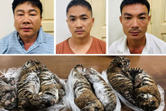 Tiger trafficker sentenced to 6 years in prison