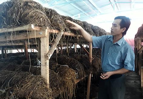 SMEs,VCCI,Vu Tien Loc,vietnam economy