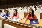 Dự kiến cơ cấu, nhân sự cho Quốc hội khóa mới
