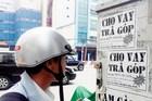 'Siết' chậu mai để trừ nợ, kẻ cho vay nặng lãi ở Bình Định bị bắt