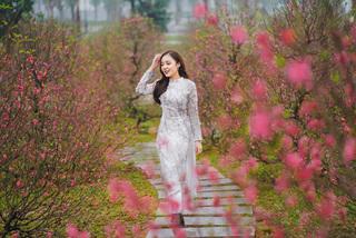 2 lễ hội hoa Xuân 'không thể bỏ lỡ' ở Vinhomes