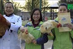 Những kiểu thưởng Tết độc lạ ở Trung Quốc