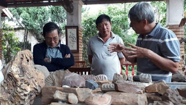 Palaeontology museum unearths Central Highlands history