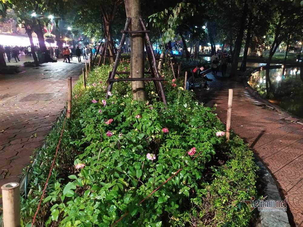 Hà Nội,Tết Nguyên Đán,Tết Canh Tý 2020