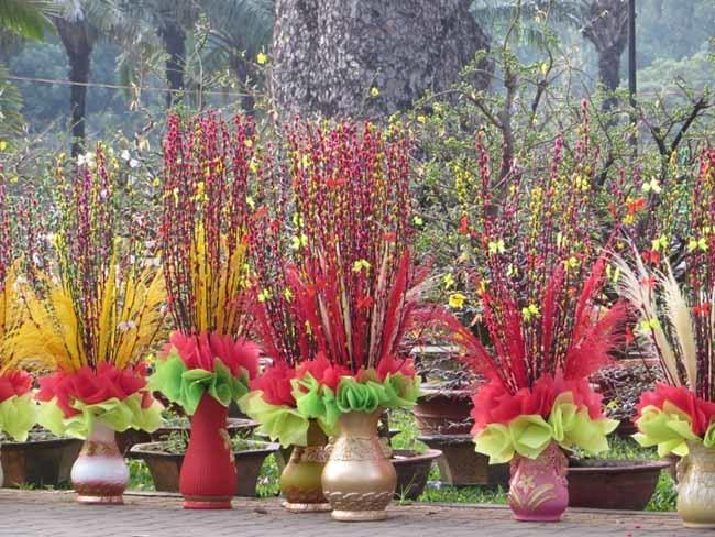 Tiết lộ phong thuỷ bất ngờ từ những cây, hoa hút tài lộc đầu năm mới