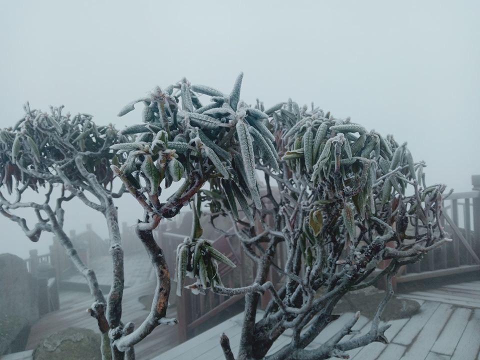 Âm 3 độ Fansipan hóa châu Âu, băng tuyết phủ khắp nơi