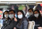 Tạm dừng các lễ hội, tập trung phòng chống dịch virus corona khi cần thiết