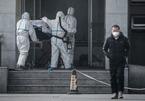 Tiết lộ thông tin quan trọng từ 80 ca tử vong vì virus corona