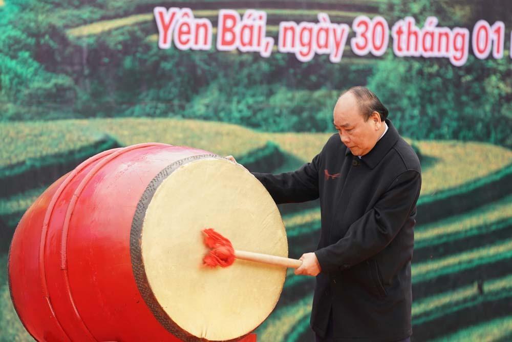 Thủ tướng phát động Tết trồng cây đời đời nhớ ơn Bác Hồ
