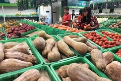 CPI in January hits record high in recent 7 years