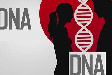 Chuyện lạ thế giới, mai mối qua xét nghiệm DNA