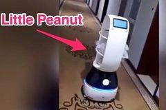 Dùng robot đưa thức ăn cho người bị cách ly vì virus Vũ Hán