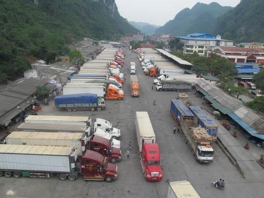 Hàng trăm xe thanh long 'tắc đường' sang Trung Quốc vì virus corona